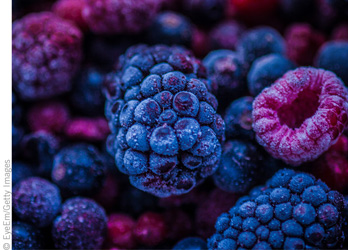 Quality Frozen Berries